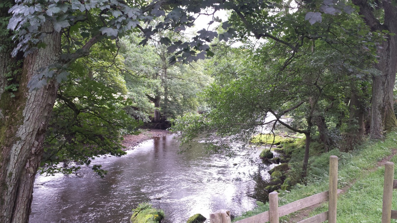 River Derwent downstream image